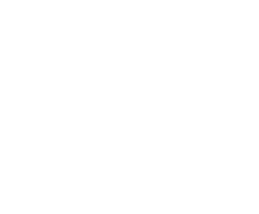 The Crown at Bray